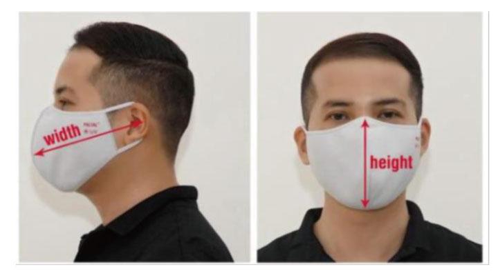マスク着用見本